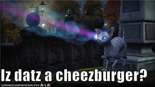 Cheezburger Image 5359652352