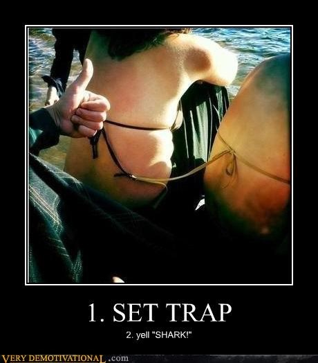 bikini good idea Pure Awesome shark trap - 5359658752
