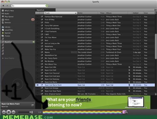 bar Music Nyan Cat proof spotify - 5359735296