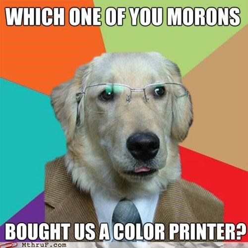 business dog colorblind dogs meme pets printer