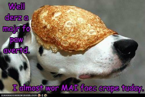 Cheezburger Image 5360739072