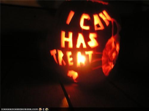 awesome,best of the week,carve,carving,halloween,meowloween,package post,pumpkins,scary,win