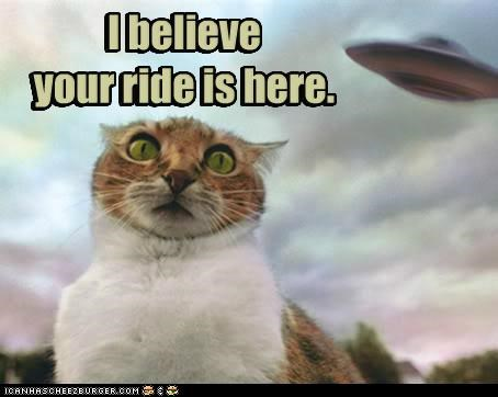 Aliens,cat,flying saucer,get it loser,I Can Has Cheezburger,ride,space ship,ufo,your ride is here