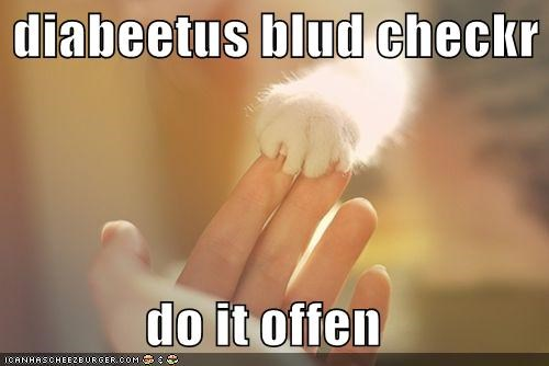 best of the week,Blood,caption,captioned,cat,checker,diabetes,do,Hall of Fame,instructions,it,lolwut,often,paw