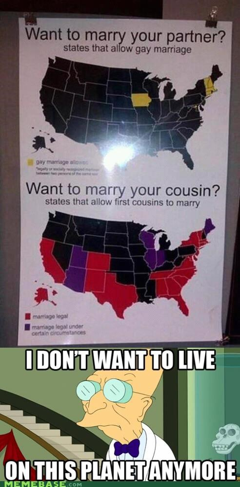 america,cousin,culture,gay,i dont want to live on this planet anymore,marriage,partner