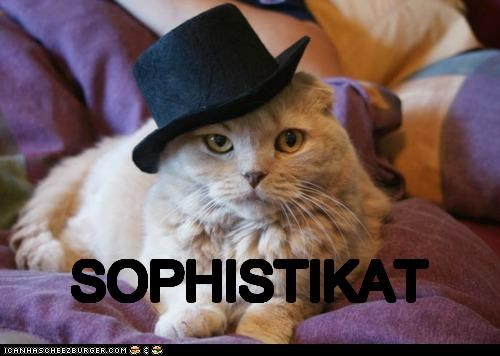 caption captioned cat hat prefix pun sophisticated suffix - 5362328576