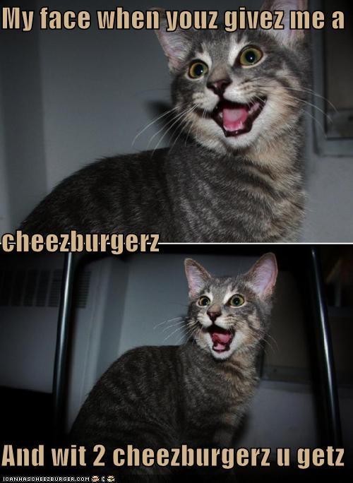 Cheezburger Image 5362522368