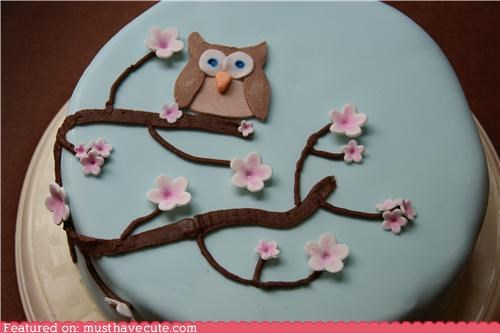 cake,cherry blossoms,epicute,flowers,fondant,Owl,tree