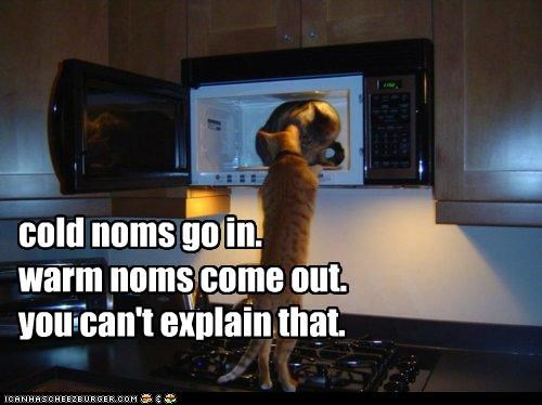 cant caption captioned cat cold explain in magic meme microwave noms out that warm - 5363220480