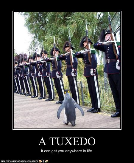 A TUXEDO It can get you anywhere in life.