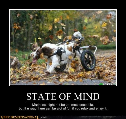 STATE OF MIND Madness might not be the most desirable, but the road there can be alot of fun if you relax and enjoy it.