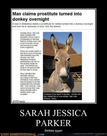 donkey,hilarious,sexy times,SJP,wtf