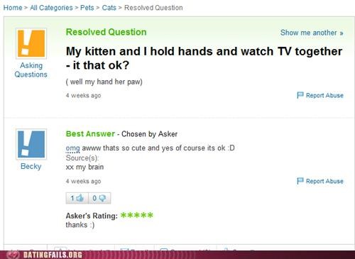 Cats,hands,holding hands,kitten,television,We Are Dating,yahoo answers
