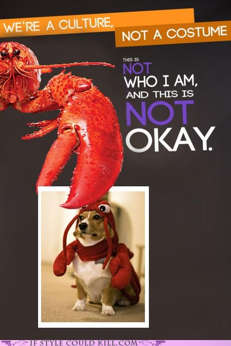 cool accessories,corgis,costume,dogs,halloween,halloween costumes,lobster