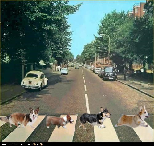 abbey road adorbz beatles classic George i can tell by the pixels john Paul photoshopped Ringo the Beatles