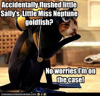 Accidentally flushed little Sally's Little Miss Neptune goldfish? No worries I'm on the case!