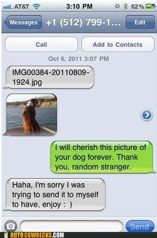 dogs facebook Photo picture wrong number - 5364119040