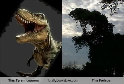 This Tyrannosaurus Totally Looks Like This Foilage
