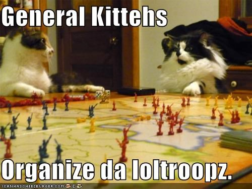 all quiet on the western front army Battle board game Cats general generals I Can Has Cheezburger loltroops military risk troops