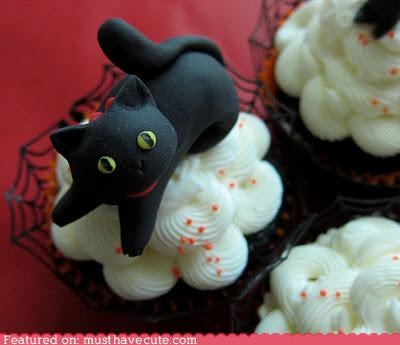 best of the week,black cat,cupcake,epicute,fondant,frosting,halloween,kitty
