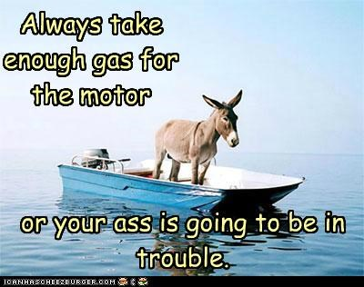 advice,always,ass,caption,captioned,donkey,double meaning,enough,gas,motor,otherwise,precaution,pun,take,trouble