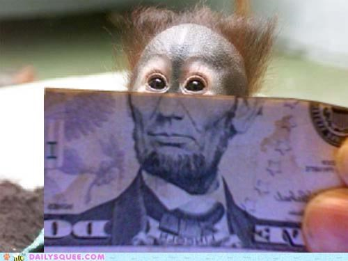 acting like animals clever Hall of Fame idiom is juxtaposition literalism money mouth orangutan put shoop where - 5365596160