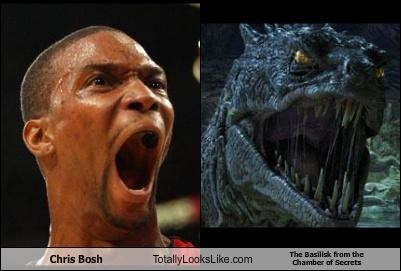 Chris Bosh Totally Looks Like The Basilisk from the Chamber of Secrets