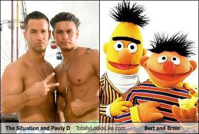 bert and ernie,funny,jersey shore,pauly d,Sesame Street,the situation,TLL