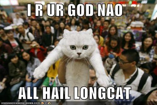 all am caption captioned cat god hail I longcat now