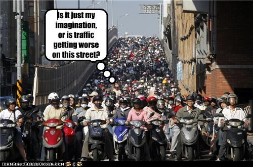 Cheezburger Image 5366304512