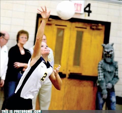 costume halloween teen wolf teens volleyball - 5366347264