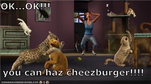 Cheezburger Image 5366617088