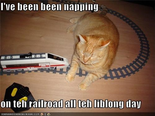 all asleep caption captioned cat day nap napping obstacle parody railroad sitting sleeping song tabby toy track train working