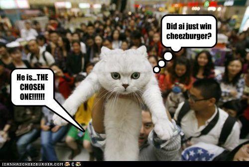 Cheezburger Image 5367003392