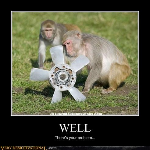 repair monkey funny