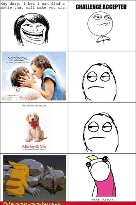 best of week,cry,girls,marley and me,movies,pokemon movie,rage comic,Rage Comics,the notebook