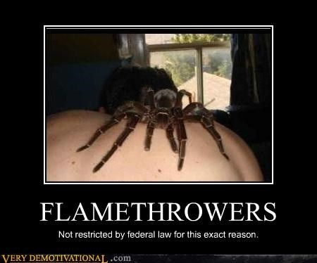 flamethrowers,scary,spider,Terrifying