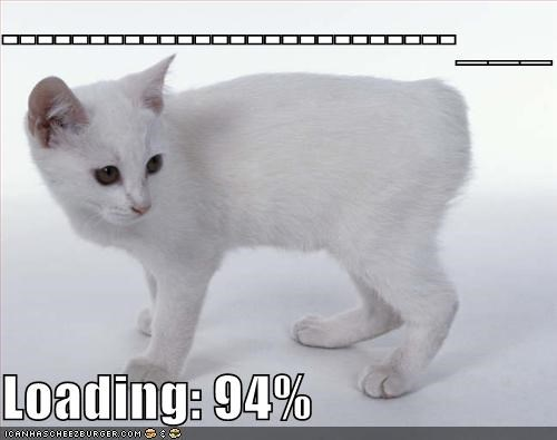 loading lolcats tails white - 536792832