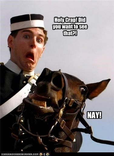 horses political pictures soldiers - 5368253952
