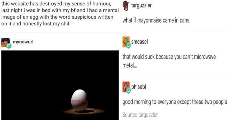 hysterical tumblr posts