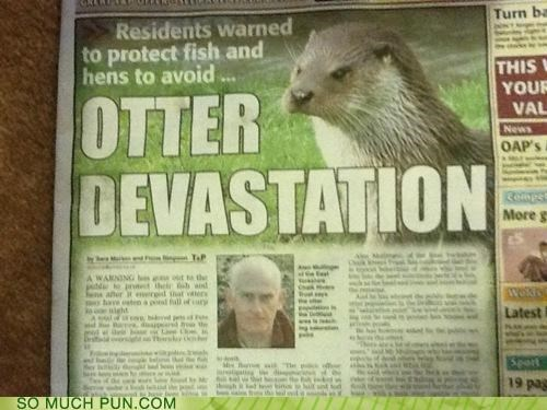 Hall of Fame,headline,literalism,newspaper,otter,similar sounding,touché,utter