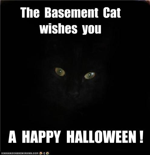 The  Basement  Cat wishes  you
