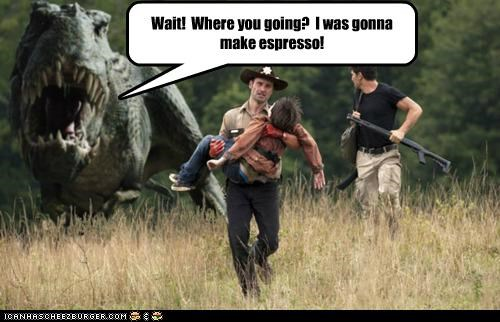 Cheezburger Image 5369258240