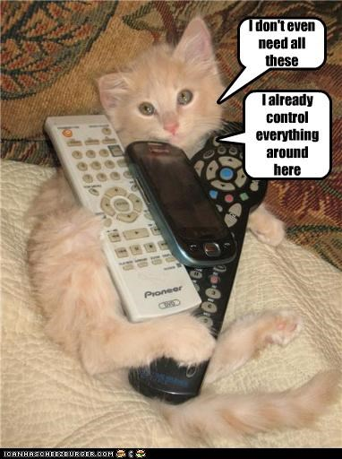 all already caption captioned cat control controllers dont even everything here I need phone remote remotes these