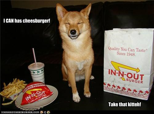 I CAN has cheesburger! Take that kitteh!