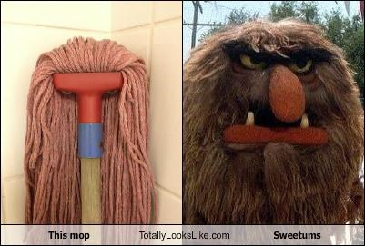This mop Totally Looks Like Sweetums