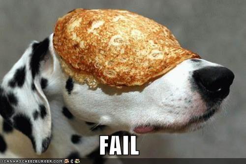 Cheezburger Image 5371321856
