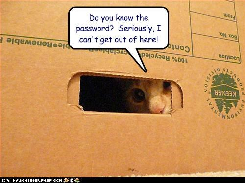 box,cant,caption,captioned,cat,do,get,help,know,out,password,question,stuck,you
