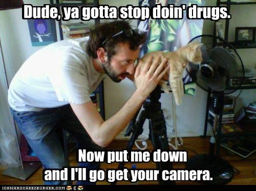 camera caption captioned cat confused confusion doing down drugs dude find get go human lolwut me need put replacement stop you