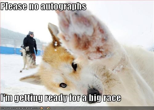 autograph husky mush no autographs outdoors race snow - 5373672704